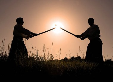 vechtsport: Aikido